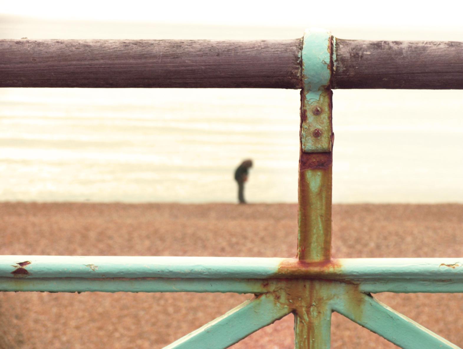 Fence Portrait