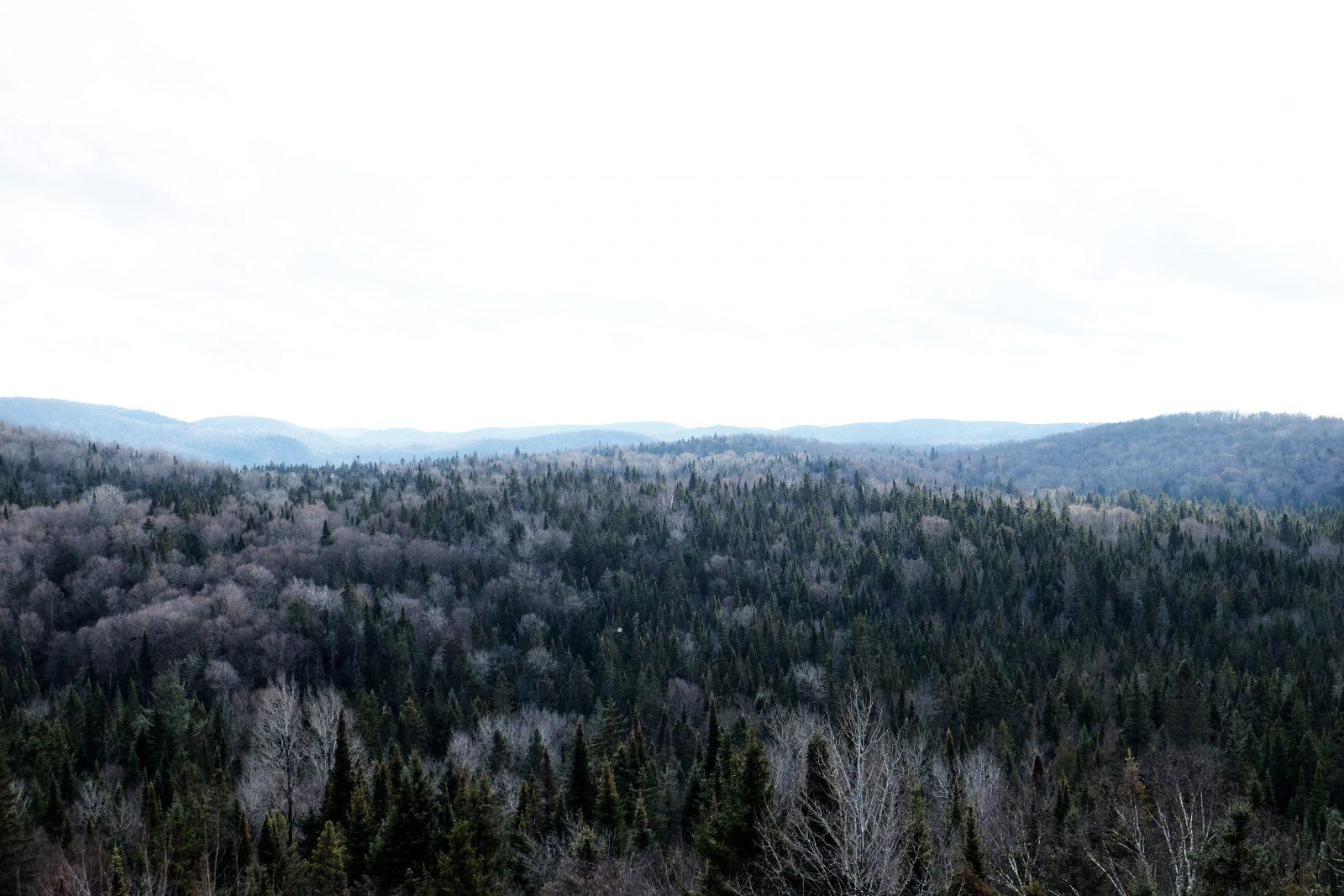 National Park Trip