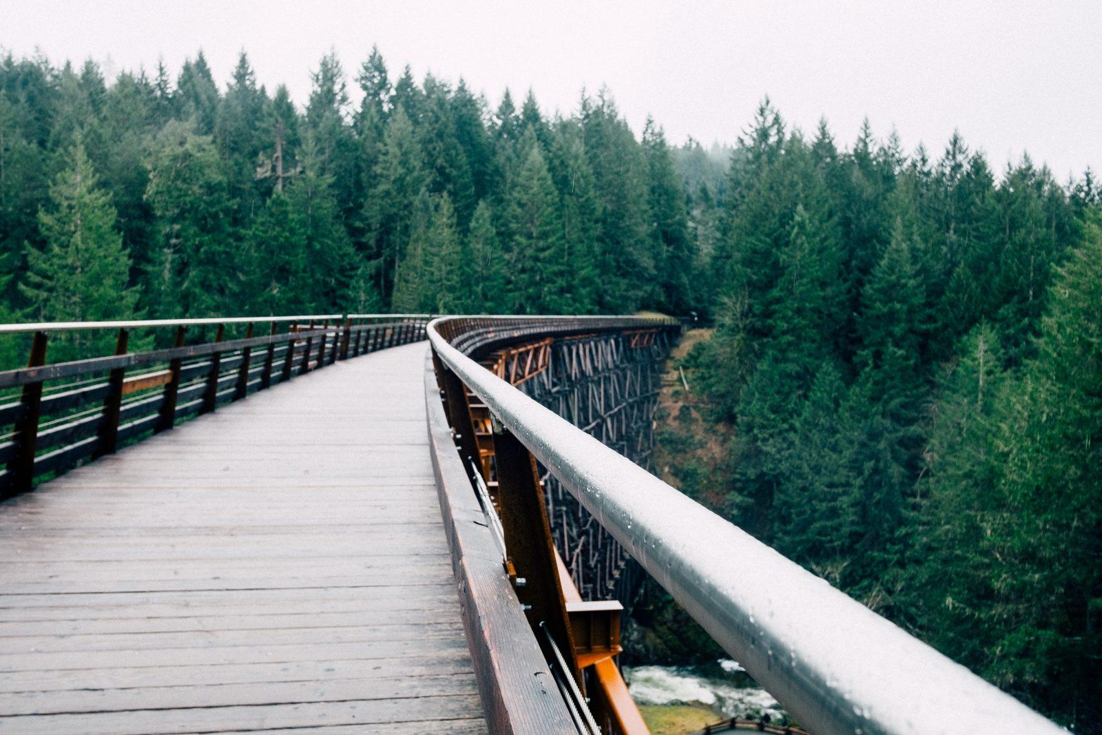 Bridge to the Nature