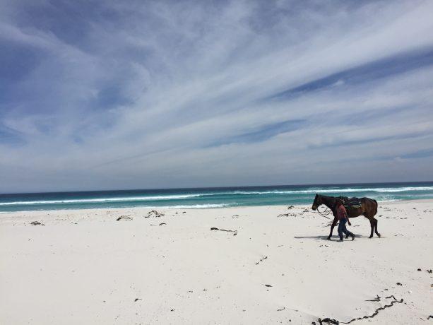 Southafrica-Cape town-Beach