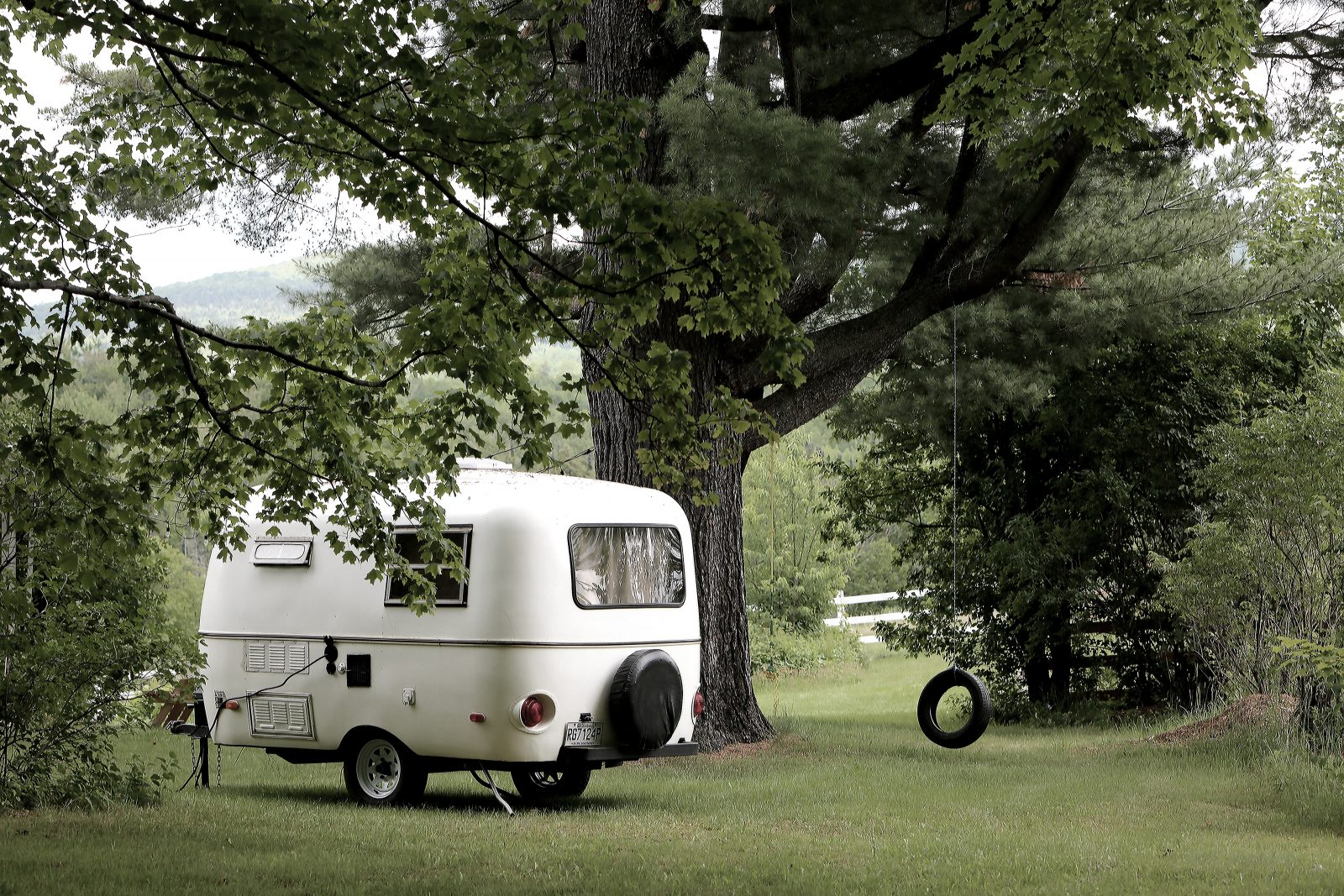 Camping by the Tree