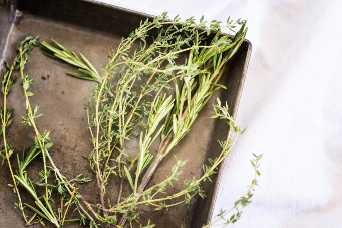 Fresh Herbs – Rosemary and Thyme