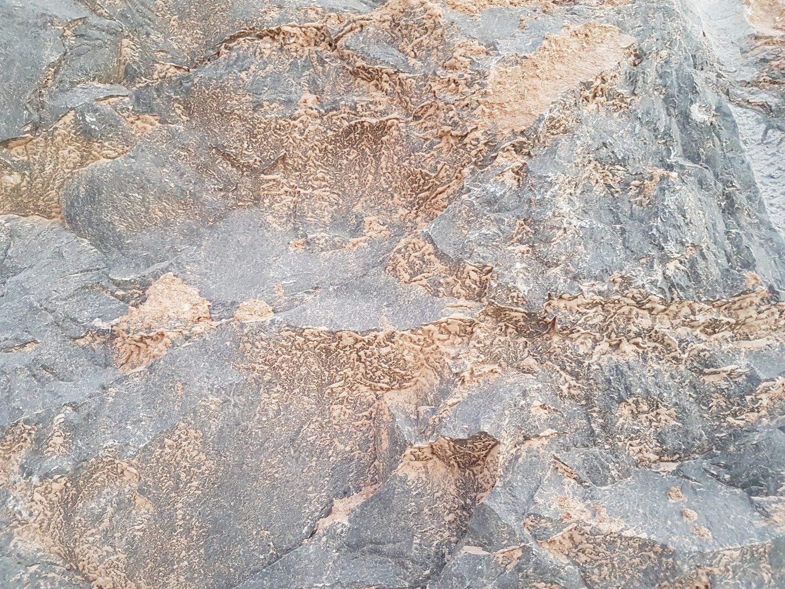 Rock Texture Free Stock Photos Life Of Pix