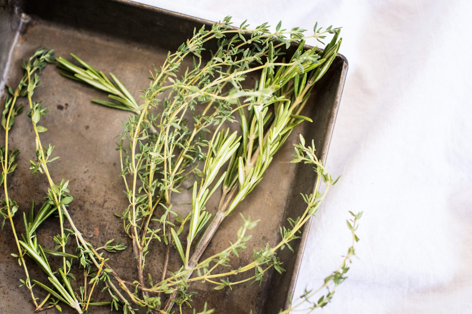Fresh Herbs Rosemary And Thyme Free Stock Photos