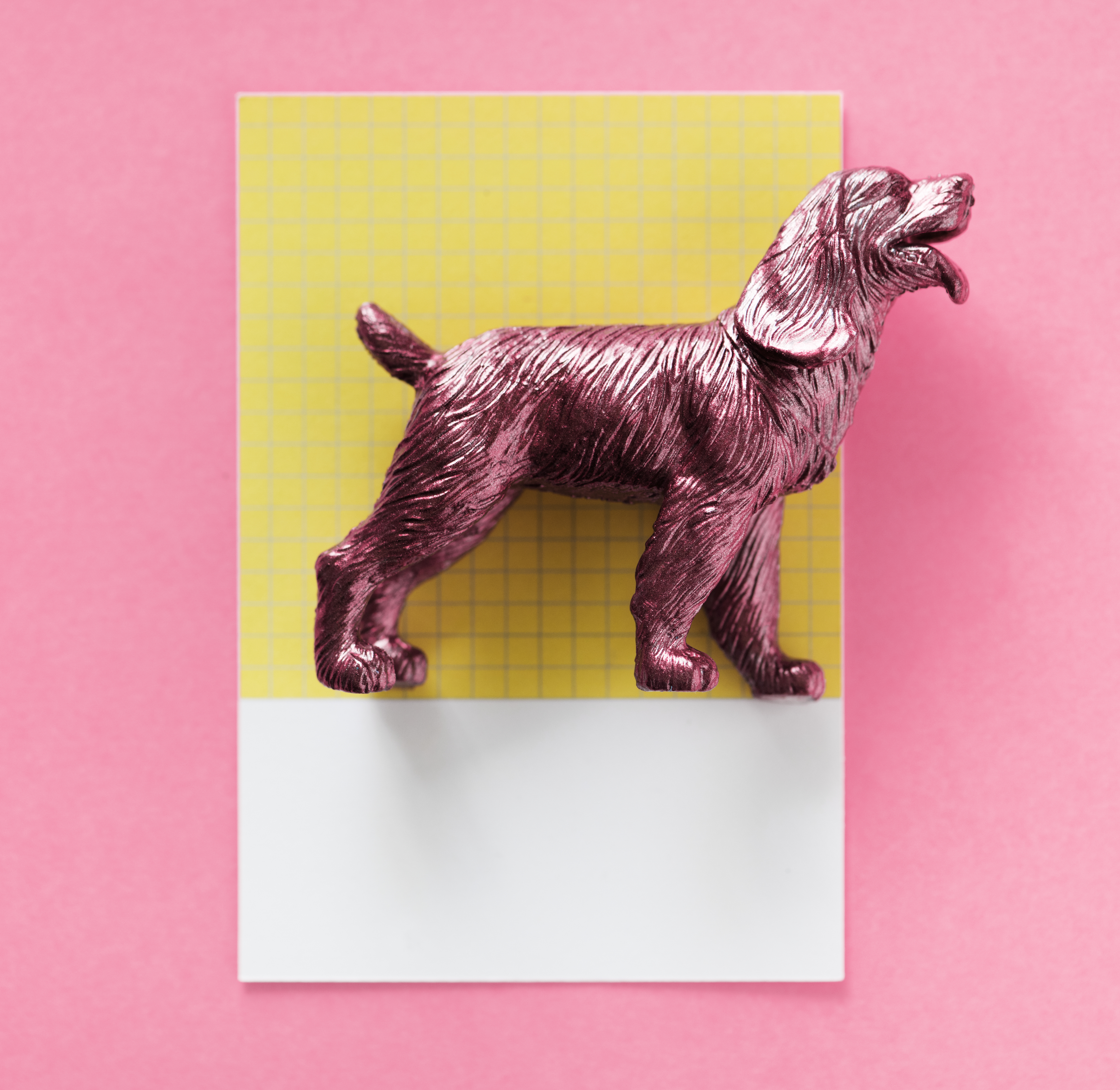 Color miniature dog figure model